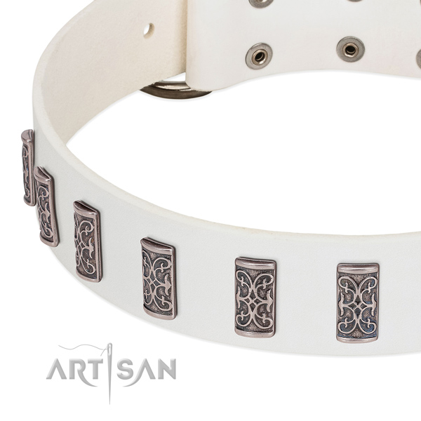 Impressive genuine leather collar for your dog walking in style