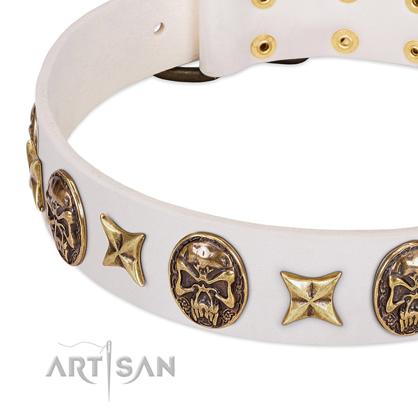 Awesome dog collar handcrafted for your lovely doggie