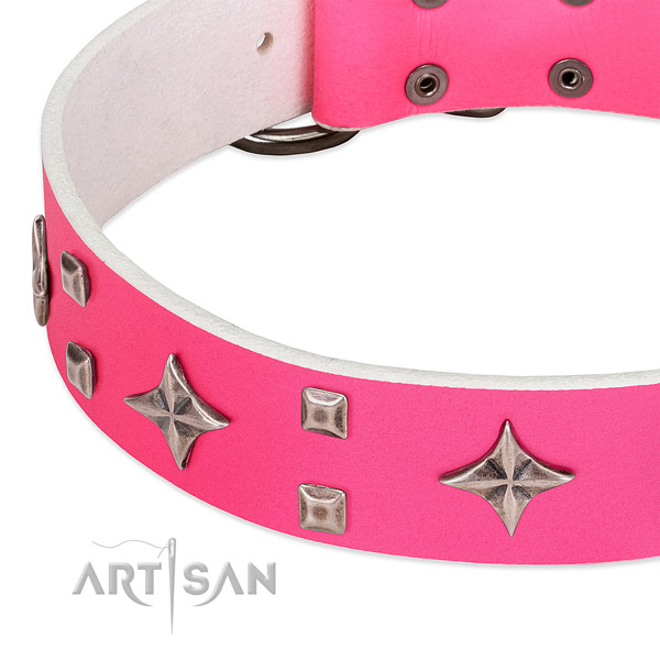Stylish walking quality full grain leather dog collar with studs
