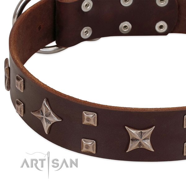 Rust resistant D-ring on full grain natural leather collar for basic training your doggie