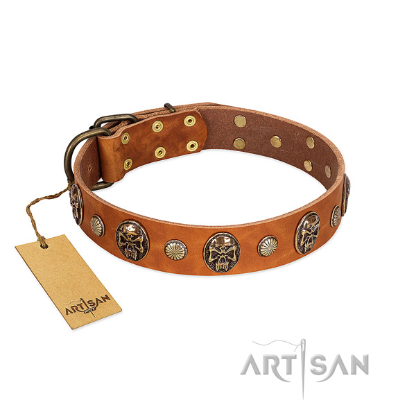 Perfect fit genuine leather dog collar for daily use