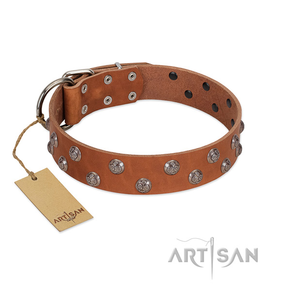 Stylish design full grain leather dog collar with corrosion resistant hardware