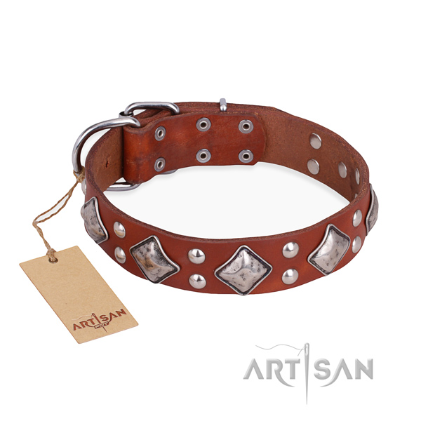 Handy use adorned dog collar with durable traditional buckle