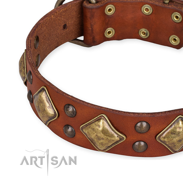 Natural leather collar with corrosion proof D-ring for your stylish doggie