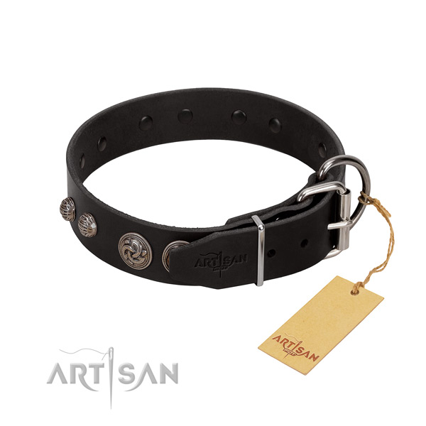 Top quality natural leather dog collar with corrosion resistant fittings