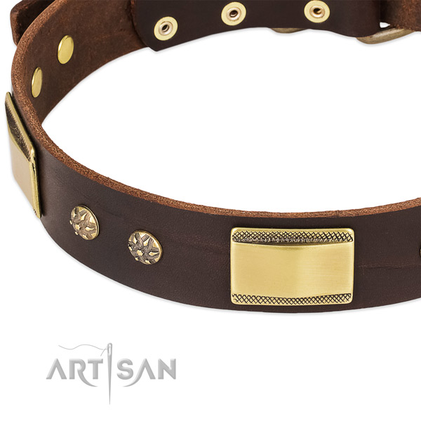 Reliable decorations on full grain leather dog collar for your pet