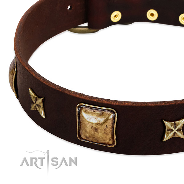 Reliable adornments on full grain natural leather dog collar for your canine