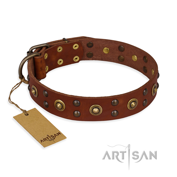 Studded leather dog collar with durable buckle