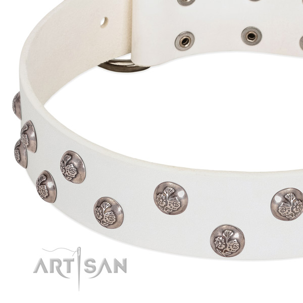 Leather dog collar with corrosion proof buckle and embellishments