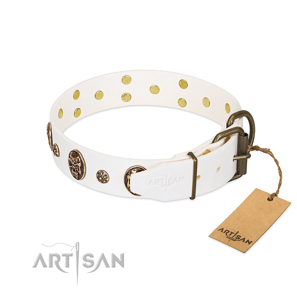 Corrosion proof embellishments on full grain leather dog collar for your doggie