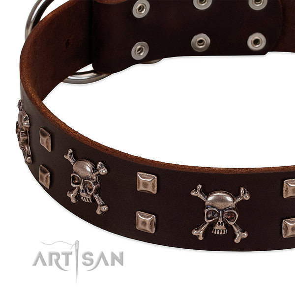 Adorned collar of full grain leather for your handsome doggie