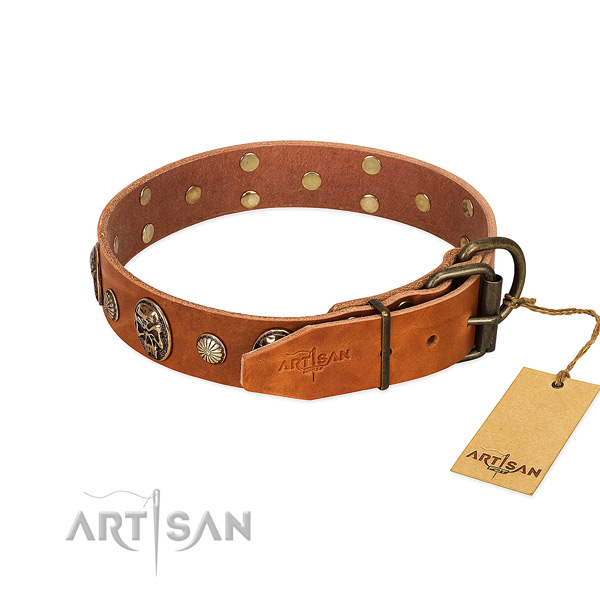 Rust-proof buckle on natural genuine leather collar for basic training your doggie
