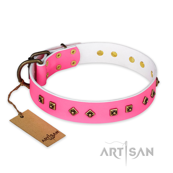 Stylish full grain natural leather dog collar with strong fittings