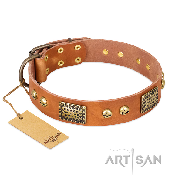 Easy to adjust natural leather dog collar for basic training your canine