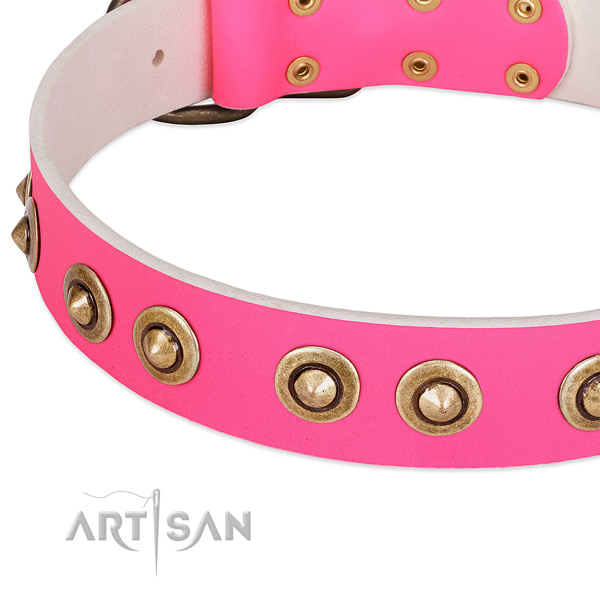 Corrosion resistant adornments on full grain leather dog collar for your doggie