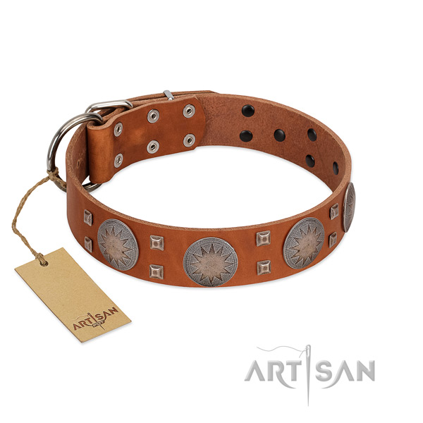 Unique full grain leather collar for your lovely pet