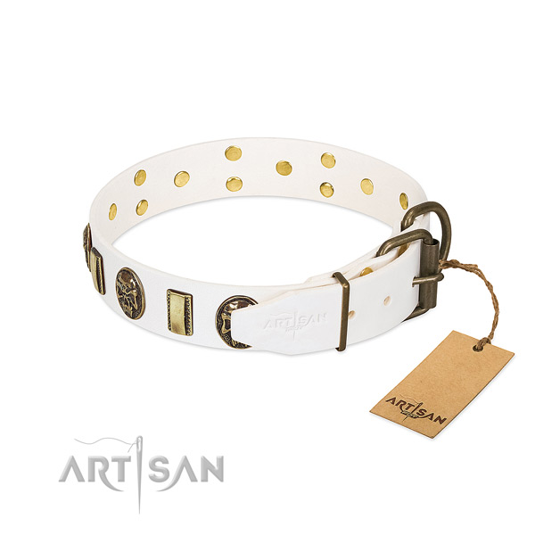 Reliable D-ring on full grain leather collar for stylish walking your doggie
