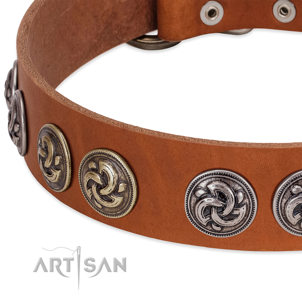 Extraordinary full grain natural leather collar for your four-legged friend daily walking