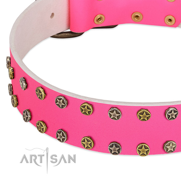 Quality full grain leather collar with studs for your canine