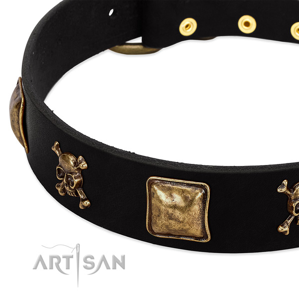 Top rate leather collar with adornments for your pet