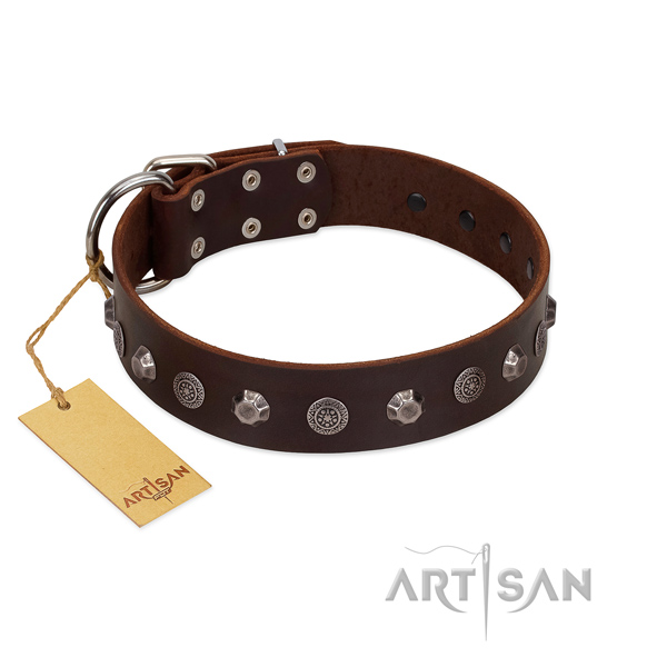 Significant genuine leather dog collar