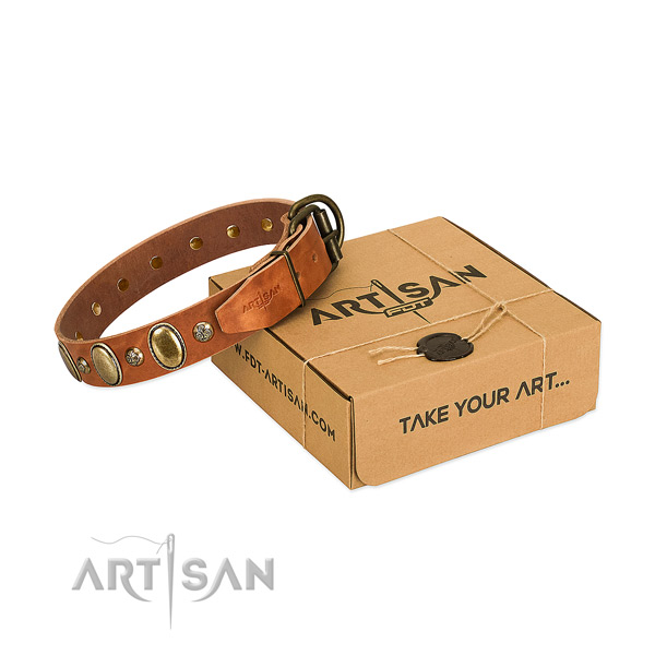 Easy adjustable natural leather dog collar with reliable hardware