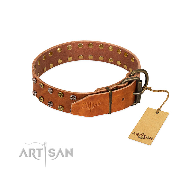 Daily walking leather dog collar with stylish decorations