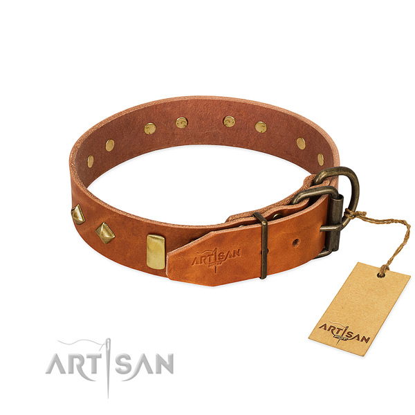 Comfortable wearing full grain natural leather dog collar with significant studs