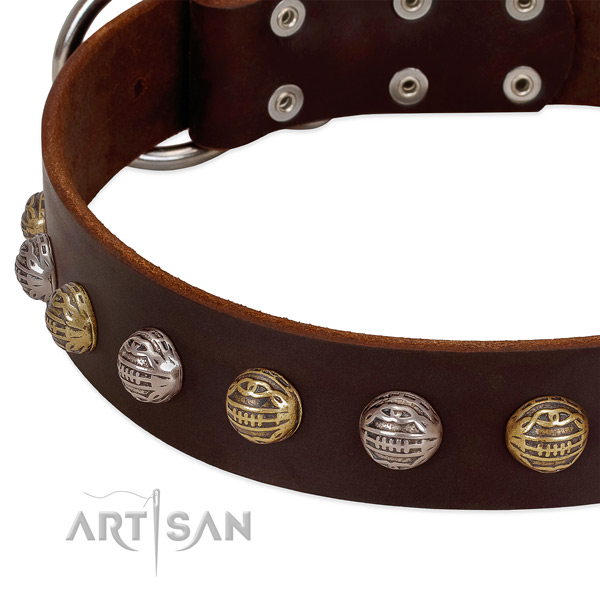 Full grain genuine leather dog collar with reliable buckle and decorations