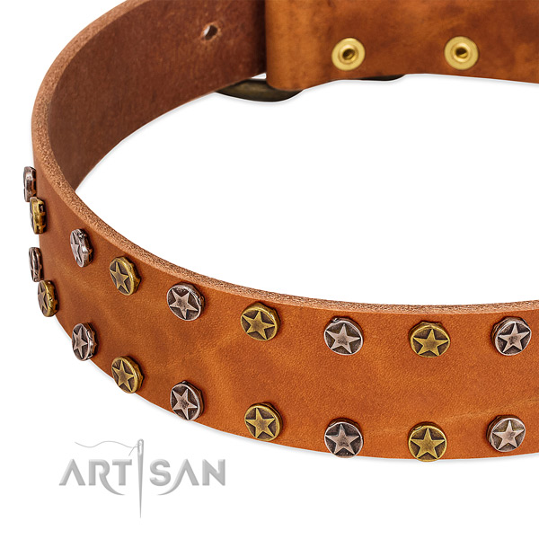 Handy use full grain leather dog collar with exquisite adornments