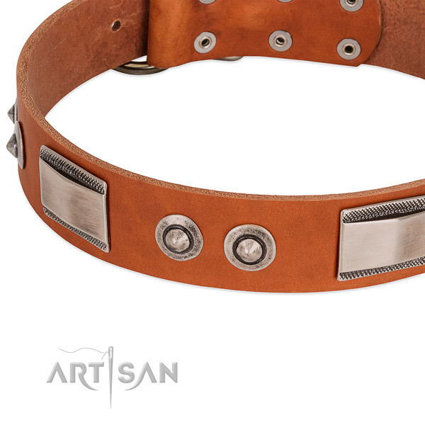 Trendy full grain genuine leather collar with adornments for your dog