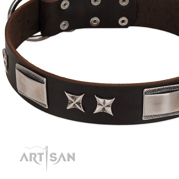 Reliable genuine leather dog collar with reliable D-ring
