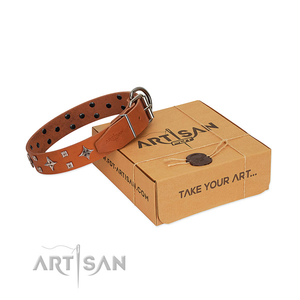 Fashionable leather collar for your four-legged friend walking