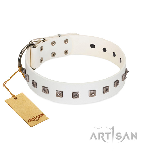 Top notch embellished genuine leather dog collar