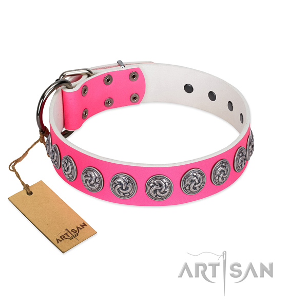 Comfortable full grain natural leather dog collar with strong fittings