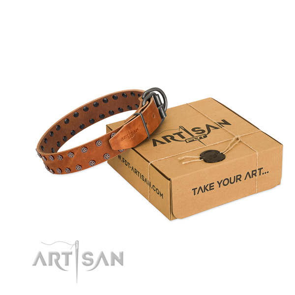 High quality natural leather dog collar with adornments for your stylish dog