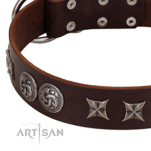 Natural leather collar with unique adornments for your four-legged friend