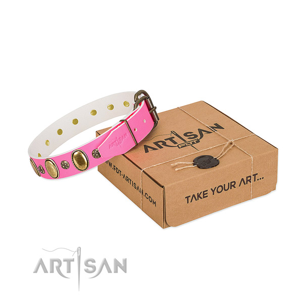 Daily use top notch genuine leather dog collar with studs
