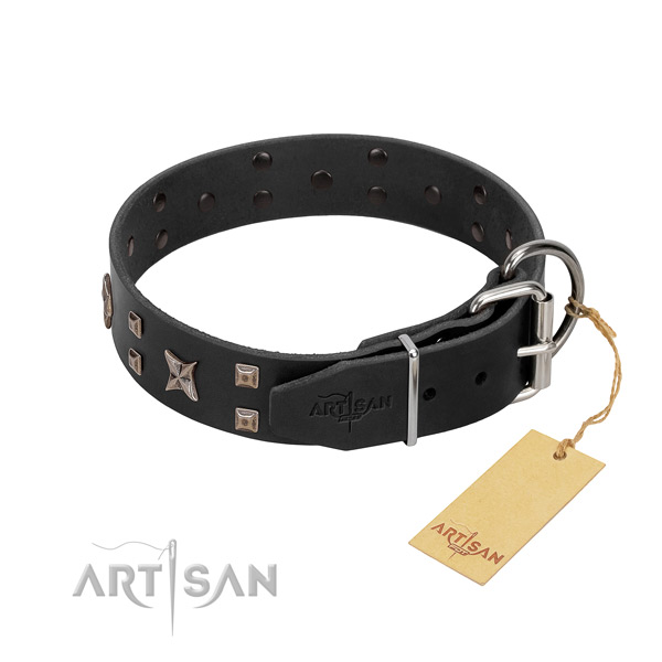 Durable full grain leather dog collar for your stylish four-legged friend