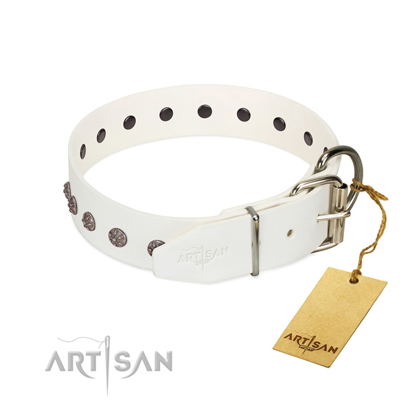 Flexible full grain genuine leather dog collar with adornments for your pet