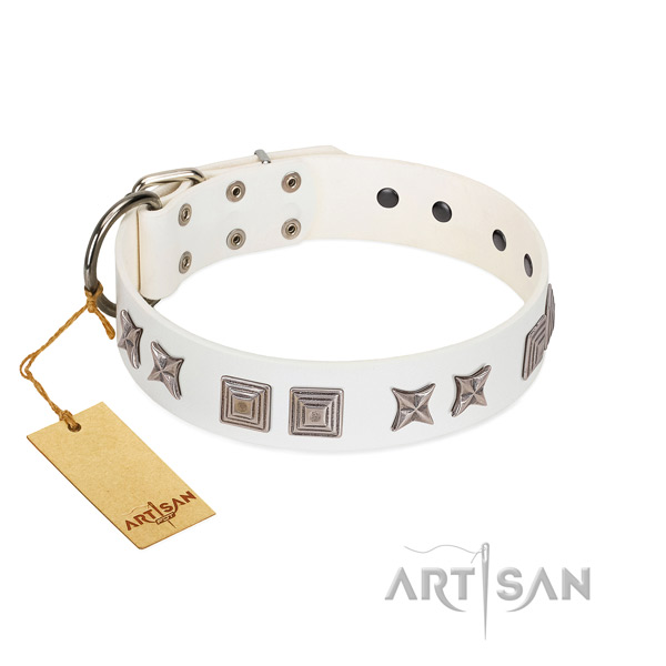 Full grain leather dog collar with fashionable decorations created dog