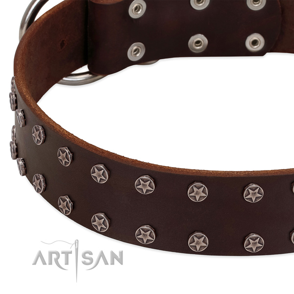 Flexible full grain leather dog collar with adornments for your pet