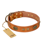 """Sun Beams"" FDT Artisan Tan Leather Cane Corso Collar with Decorations"