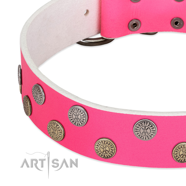 Quality leather dog collar with decorations for fancy walking