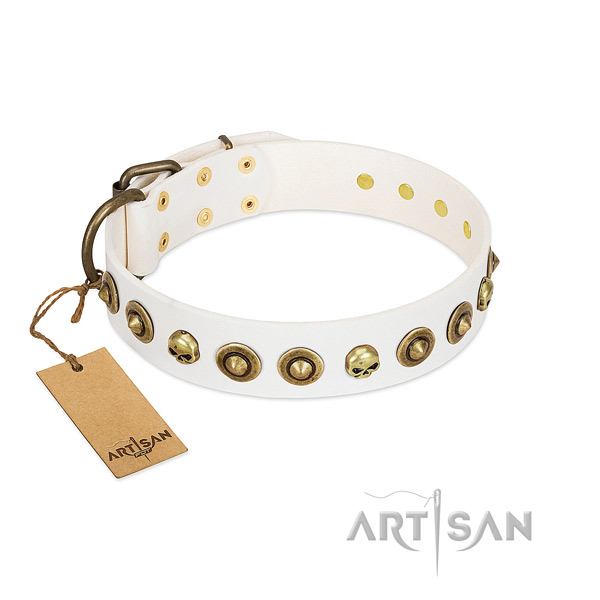 Natural leather collar with awesome embellishments for your canine