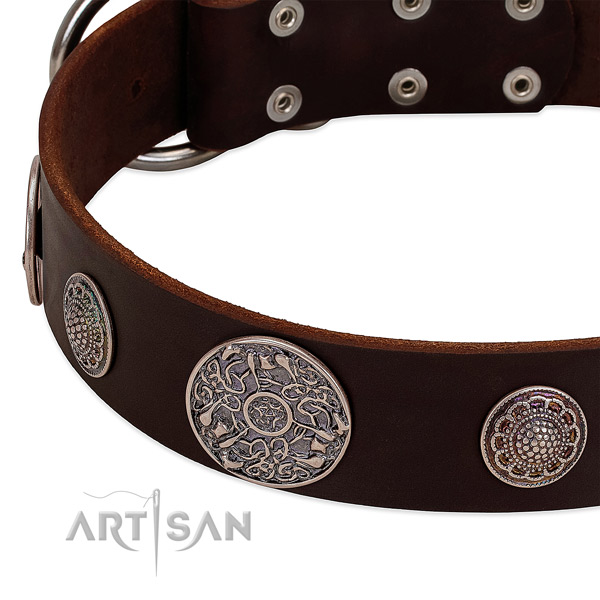 Strong buckle on full grain genuine leather dog collar