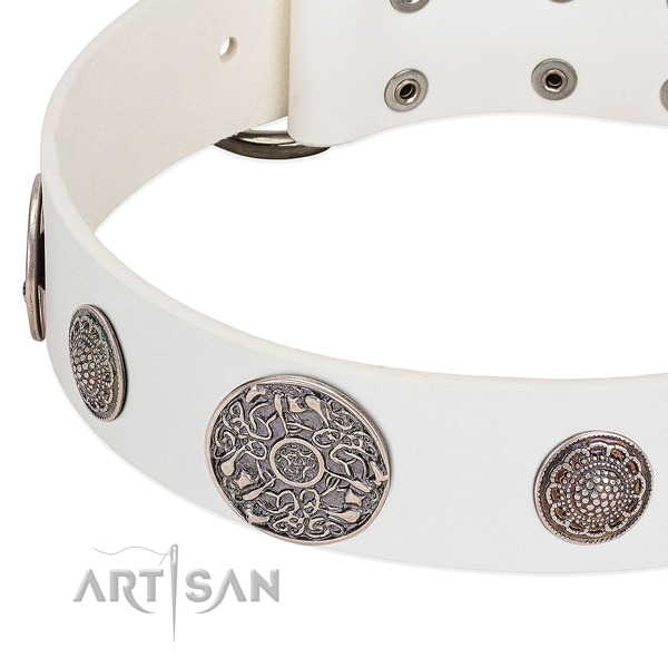 Corrosion proof decorations on full grain leather dog collar