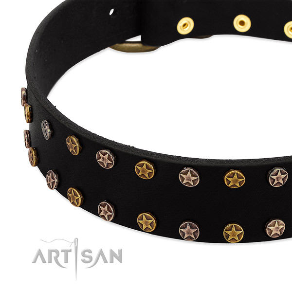 Designer adornments on full grain natural leather collar for your canine