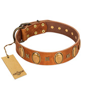 """Glossy Autumn"" Designer Handmade FDT Artisan Tan Leather Cane Corso Collar with Ovals and Studs"