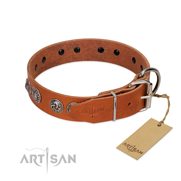 Exceptional natural genuine leather collar for your pet stylish walks